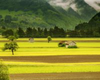 Ένταξη των παραγωγών στο καθεστός των αγροτών