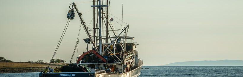 Ταμείο Αλληλεγγύης σε αλιείς πληγέντες του Σαρωνικού κόλπου