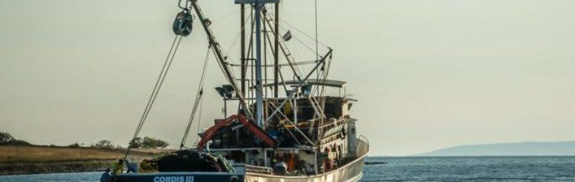Έλληνες αλιείς: Παράλογη και επιζήμια για τη χώρα η κατάργηση της βιντζότρατας – Να παρέμβει ο πρωθυπουργός