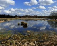Ε.Ε. : Ενισχύσεις σε αγρότες που επλήγησαν από τις δυσμενείς καιρικές συνθήκες