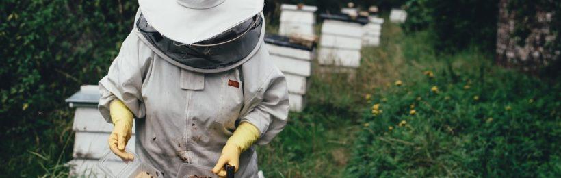 Νομαδική μελισσοκομία: Αντικατάσταση κυψελών και Οικονομική στήριξη για το έτος 2018