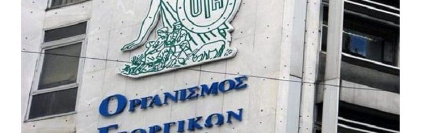 Νέος ΟΓΑ ιδρύεται τον Δεκέμβριο σύμφωνα με την ανακοίνωση της αναπληρώτριας υπουργού Εργασίας, Θεανώ Φωτίου
