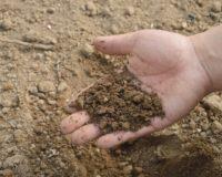 Αναθεώρησε η ΔΕΗ για την παροχή προνομιακού τιμολογίου στους αγρότες