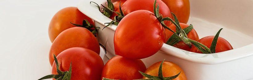 Συμβουλές για την φυτοπροστασία της ντομάτας