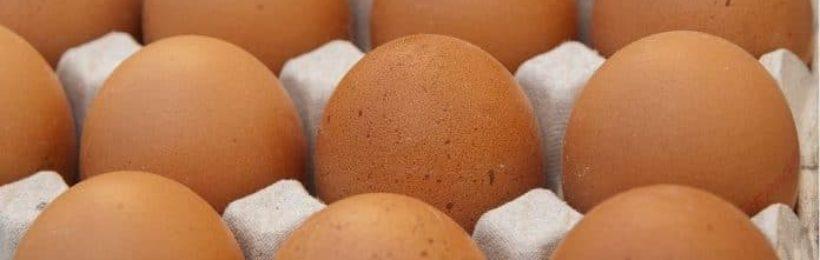 Αποδίδουν οι έλεγχοι στην αγορά, αποσύρθηκαν 34,5 τόνοι κοτόπουλων και δεκάδες χιλιάδες αυγών που επιχείρηση προωθούσε ως δήθεν βιολογικά.