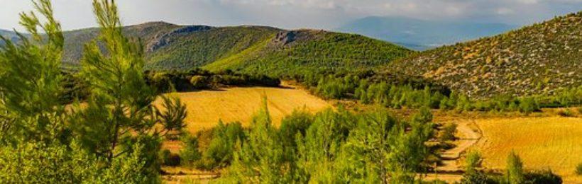 Σε λειτουργία η ιστοσελίδα του ΥΠΕΝ με όλο το περιεχόμενο των κυρωμένων δασικών χαρτών