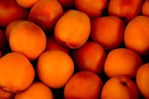 apricot-15