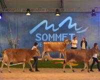 Η μεγαλύτερη διεθνής έκθεση κτηνοτροφίας στη Γαλλία