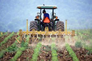 agriculturalist, farmer