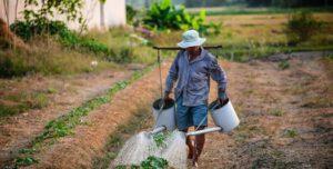 αγρότης, πότισμα, Γεωργών
