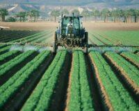 Ο αγροτικός τομέας έχει τραβήξει την προσοχή επενδυτικών οργανισμών που ενισχύουν την αγροτική οικονομία