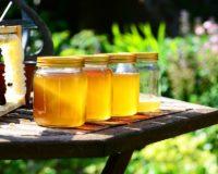 Μέλι: Αύξηση 50% το 2018 των εξαγωγών στη Γαλλία – Στη 10η θέση μεταξύ των προμηθευτών η Ελλάδα