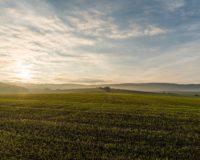Προς ολοκλήρωση η συμφωνία μεταξύ του Υπουργείου και Ευρωπαϊκού Ταμείου Επενδύσεων για τη χρηματοδότηση των επενδυτικών σχεδίων στον αγροδιατροφικό τομέα