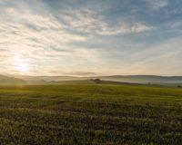 Aίτημα να επιληφθεί με ταχύτητα όλα τα ζητήματα του ΕΛΓΑ που ταλαιπωρούν τους αγρότες από τον Τάσο Μπαρτζώκα