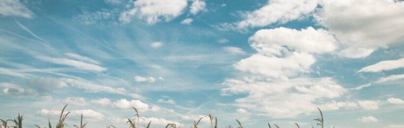 Σε τρία επίπεδα οι ετήσιες ενισχύσεις που μπορεί να λαμβάνει ένας αγρότης