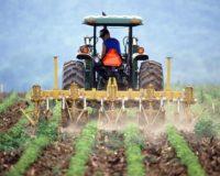 Προανήγγειλε ο Υφυπουργός Εργασίας την αποσύνδεση των ασφαλιστικών εισφορών αγροτών από το εισόδημα