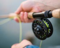 Περιφερική Ενότητα Ημαθίας: Απαγόρευση της αλιείας στα εσωτερικά ύδατα