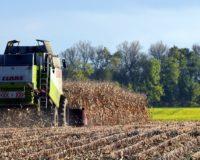 Κομισιόν: Από τα μέσα Οκτωβρίου η προκαταβολή του 70% των άμεσων ενισχύσεων στους αγρότες