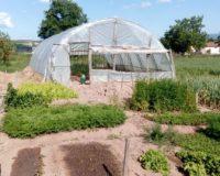Στο νέο καθεστώς του αναπτυξιακού οι μικρές επενδύσεις σε αγροτικές επιχειρήσεις από 50.000 ευρώ