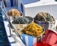 Το ζήτημα των αλιευτικών προσφυγών έθεσαν στον Υπουργό Αγροτικής Ανάπτυξης και Τροφίμων οι αλιείς