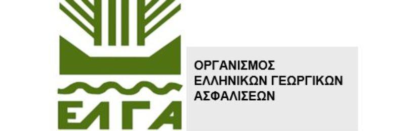 ΕΛΓΑ: Σήμερα πληρώνονται οι αποζημιώσεις ύψους 2 εκατ. ευρώ