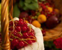 Ολοκληρώθηκε η διαδικασία των εξαγωγών θερινών φρούτων