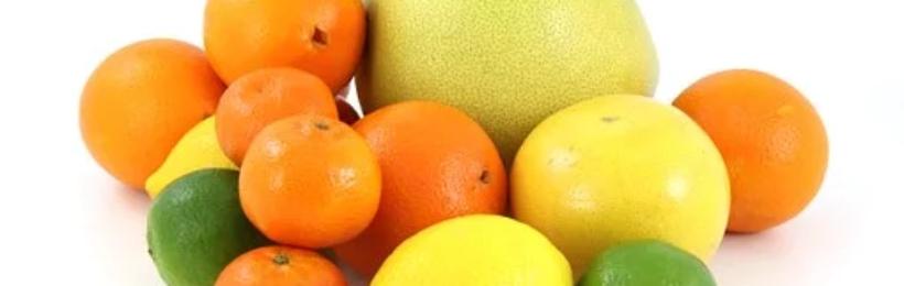Εμπάργκο από τη Ρωσία στις εισαγωγές οπωροκηπευτικών από την ΕΕ