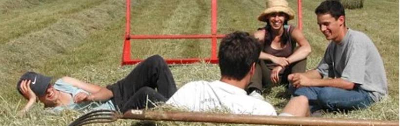 Νέοι αγρότες: Μέχρι πότε πρέπει να υποβάλουν αίτηση αποπληρωμής