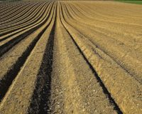 Οι ενισχύσεις σε όσους βγάζουν τα «προς το ζην» στο χωράφι, επιμένει η Επιτροπή