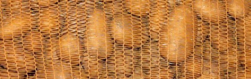 Τεράστιες ζημιές έχουν υποστεί οι καλλιεργητές πατάτας του Νομού Αχαΐας εξαιτίας του κορονοϊού